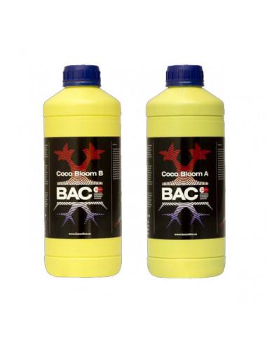 Kit Coco Bloom A&B BAC